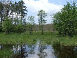 A Rigóci-tórendszer napjainkban