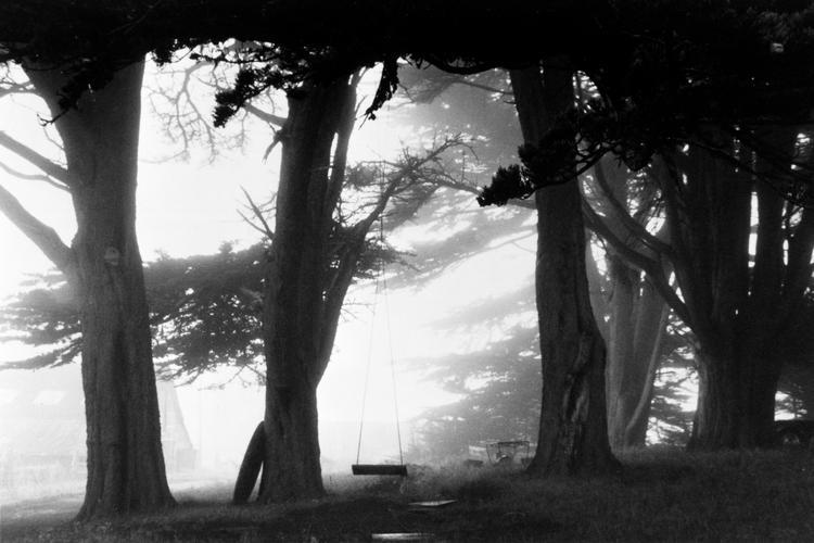 Swing. North California, USA, 1990.