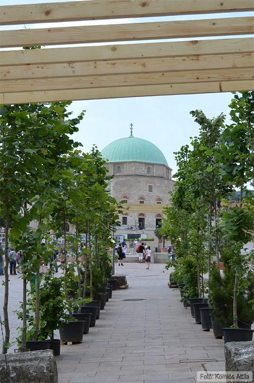Zöld hangulat folyosó a Széchenyi téren