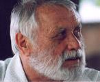 Bogádi Kis György